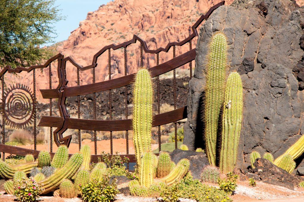 kaktused-hispaanias